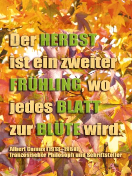 Sprüche Der Herbst Ist Ein Zweiter Frühling Wo Jedes Blatt Zur