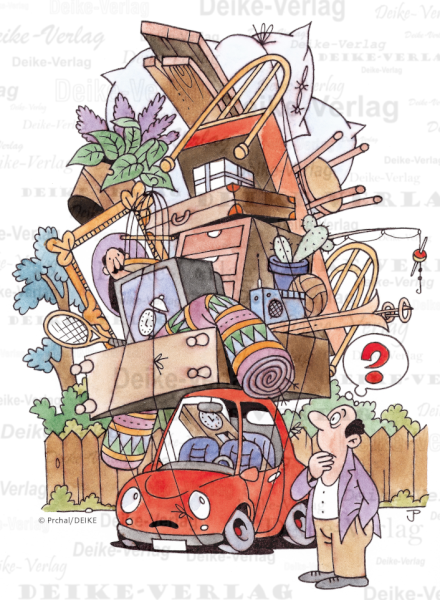 Umzug Mit Auto Und Papagei Labyrinthe Bilderratsel Ratsel